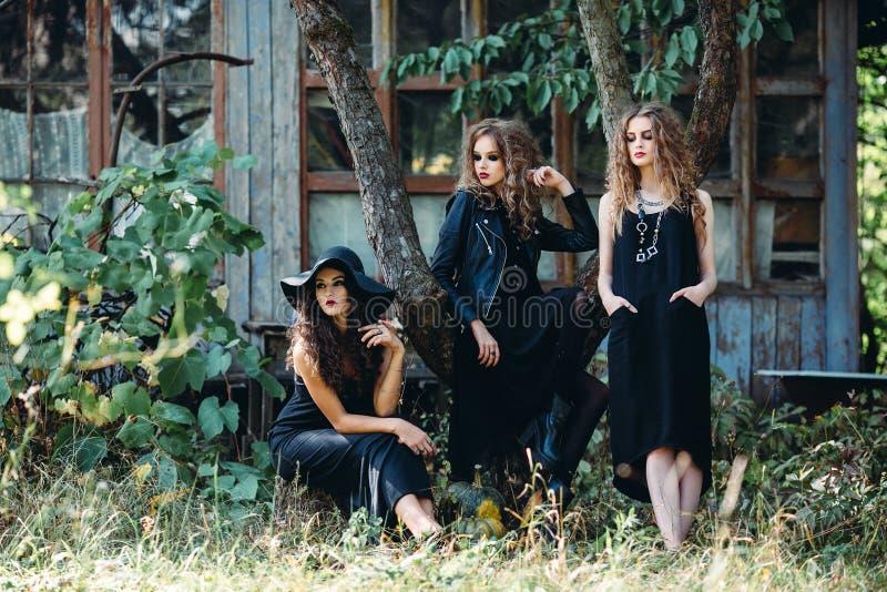 Drie uitstekende vrouwen als heksen stock foto