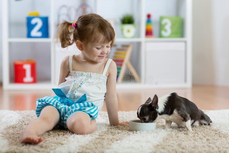 Drie van de oude kindjaar zitting op tapijt en het voeden van zijn kleine hond stock afbeelding