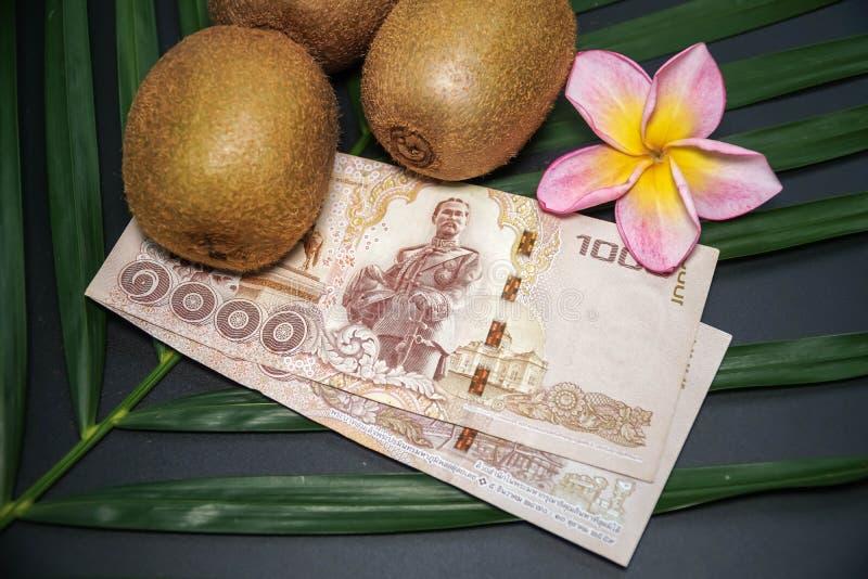 Drie Vers Ruw Exotisch Tropisch Kiwi Fruits riepen ook Chinese Gooseberrys met Thaise Nationale valutabaht royalty-vrije stock fotografie