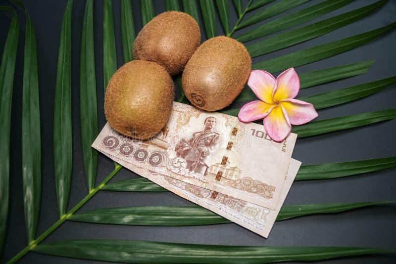 Drie Vers Ruw Exotisch Tropisch Kiwi Fruits riepen ook Chinese Gooseberrys met Thaise Nationale valutabaht stock afbeeldingen
