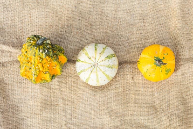 Drie verschillende de herfstpompoenen op rustieke jute stock afbeeldingen