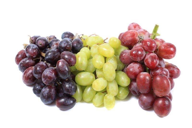 Drie verschillende types van druiven royalty-vrije stock foto