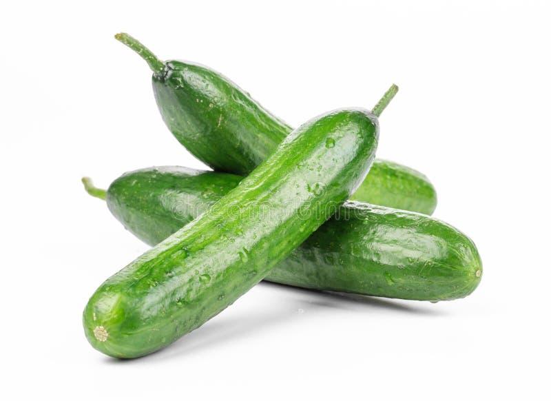 Drie verse komkommers royalty-vrije stock foto's
