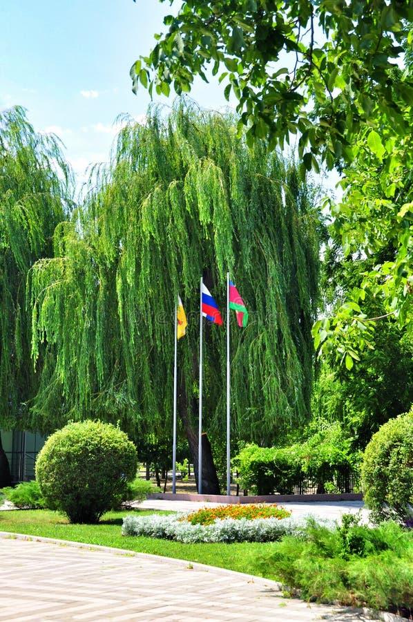 Drie vlaggen in het Park stock afbeelding