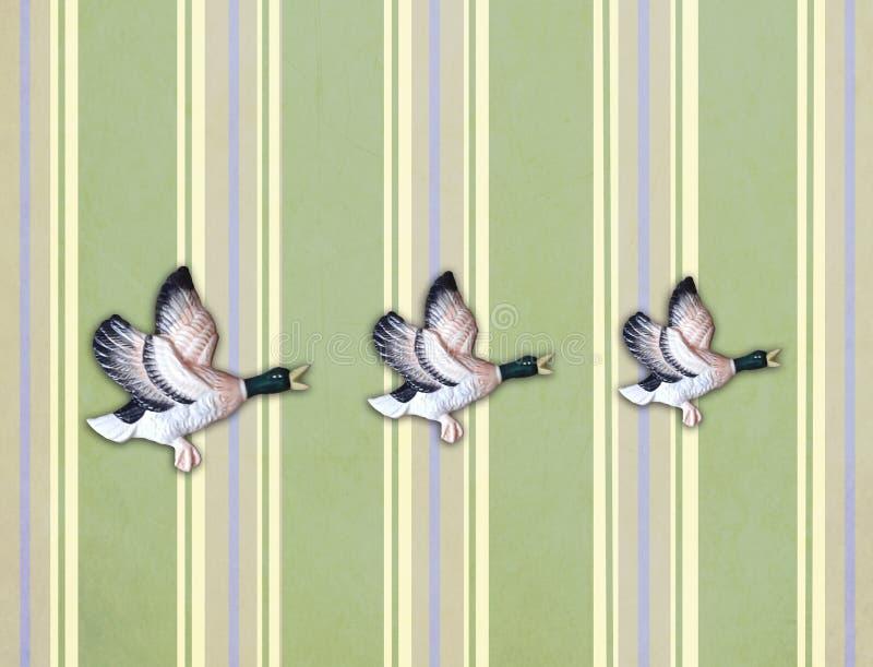 Drie vliegende eenden op oude muur royalty-vrije illustratie