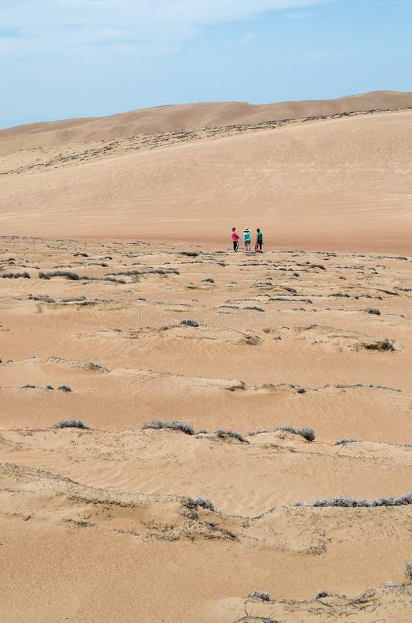 Drie vrienden in de woestijn - achtermening stock foto