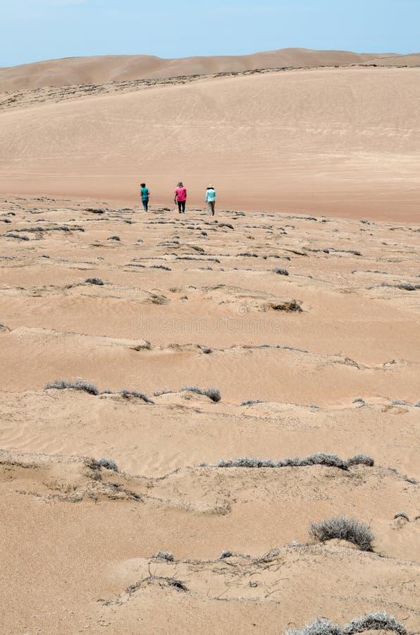 Drie vrienden die in de woestijn lopen - achtermening royalty-vrije stock fotografie
