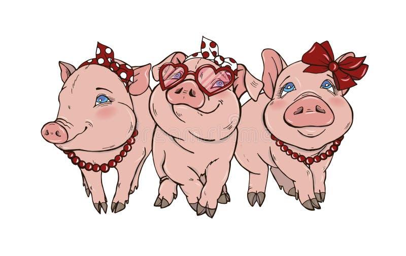 Drie vrolijke elegante varkensfashionista vector illustratie