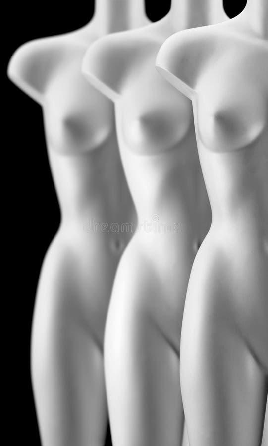 Drie Vrouwelijke Modellen Stock Fotografie