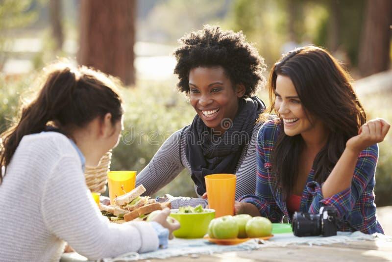 Drie vrouwelijke vrienden die bij een picknicklijst spreken stock afbeeldingen