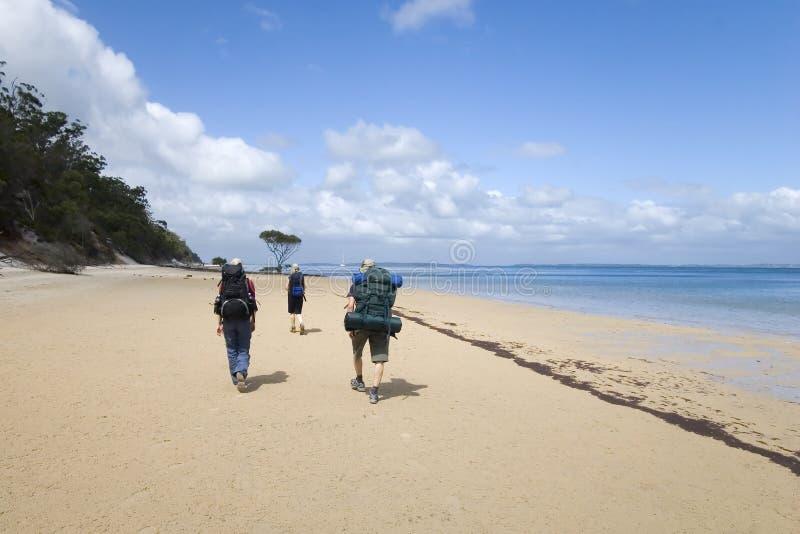 Drie wandelaars op oceaanstrand royalty-vrije stock afbeelding