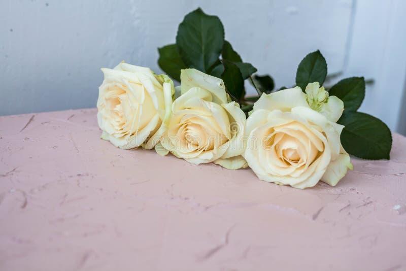 drie witte rozen op een lichte achtergrond, exemplaarruimte royalty-vrije stock foto