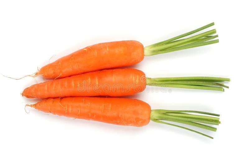 Drie wortelen op witte achtergrond royalty-vrije stock afbeeldingen