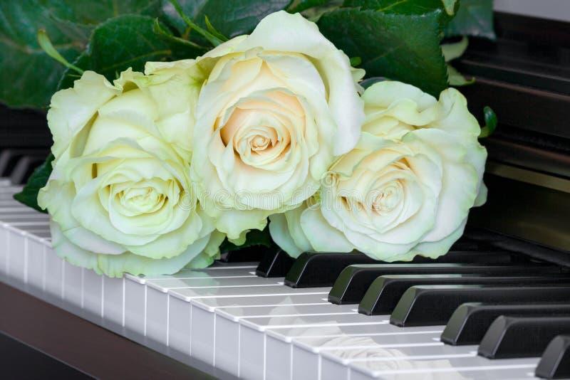 Drie zacht wit-groene rozen op pianosleutels stock afbeeldingen