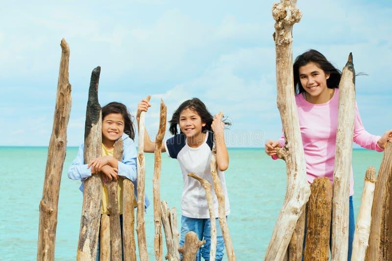 Drie zusters die door het meer spelen royalty-vrije stock foto