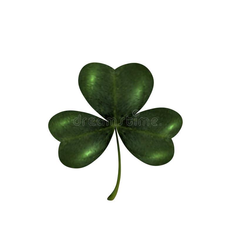 Driebladige klaver Het symbool van St Patrick s Dag Geïsoleerdj op witte achtergrond royalty-vrije illustratie