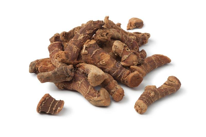 Dried Alpinia galanga royalty free stock image