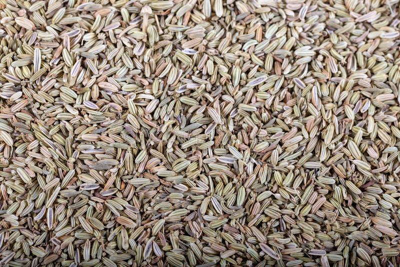 Dried Anise Seed or Aniseed Like As Background.  stock images