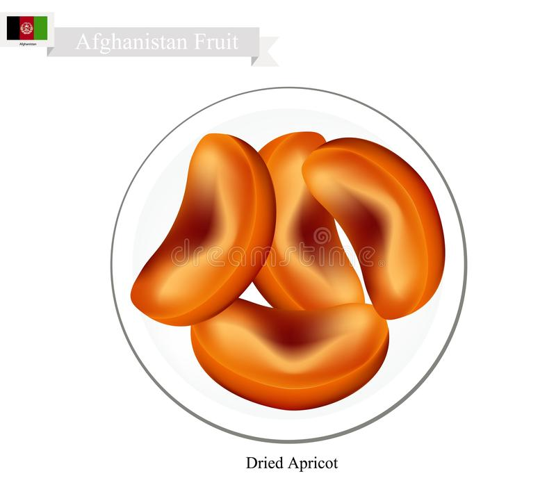 Dried Apricot, A Popular Fruit in Afghanistan. Afghanistan Fruit, Dried Apricot. One of The Most Popular Fruits of Afghanistan stock illustration