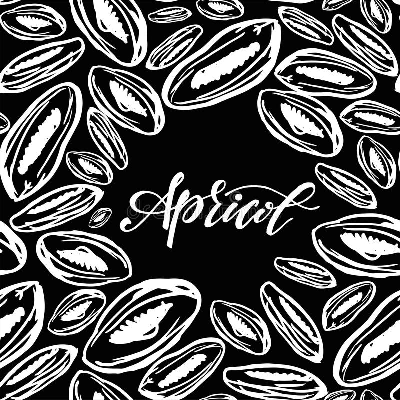 Dried apricots pattern on black background. Seamless pattern with dried apricots on black background. Cute doodle illustration royalty free illustration