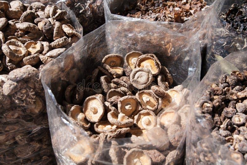 Dried asian mushrooms royalty free stock photos