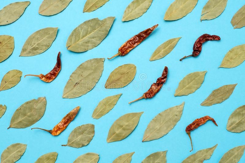 Dried bay leaves and red chili pepper on blue background. Top view royalty free stock photography