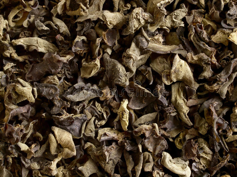 Download Dried black fungus stock photo. Image of chinese, vegetable - 22925636