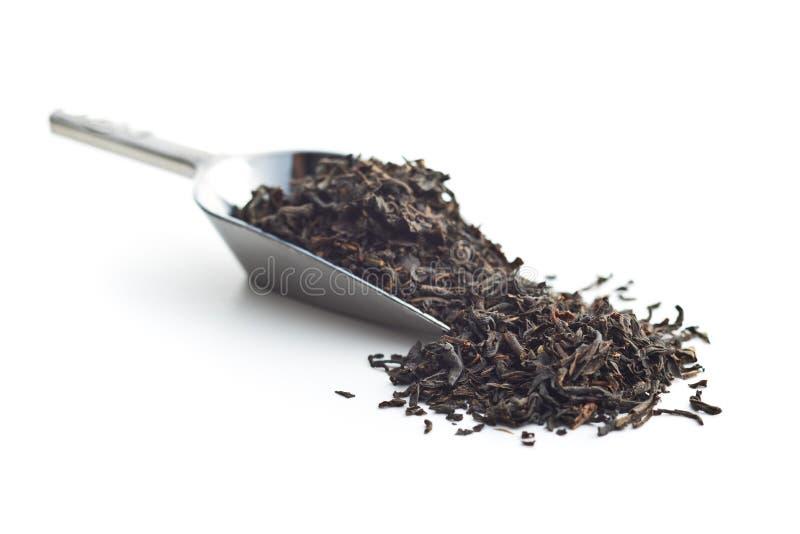 Dried black tea leaves royalty free stock photos