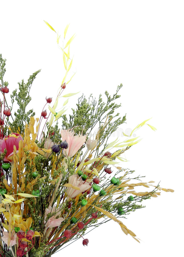 Dried bouquet royalty free stock photography