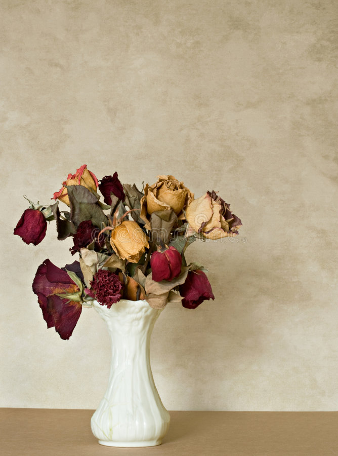Dried Bouquet royalty free stock photo