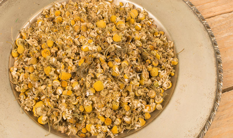 Dried Camomile Royalty Free Stock Photos