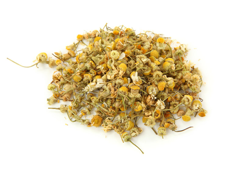 Dried camomile tea stock images
