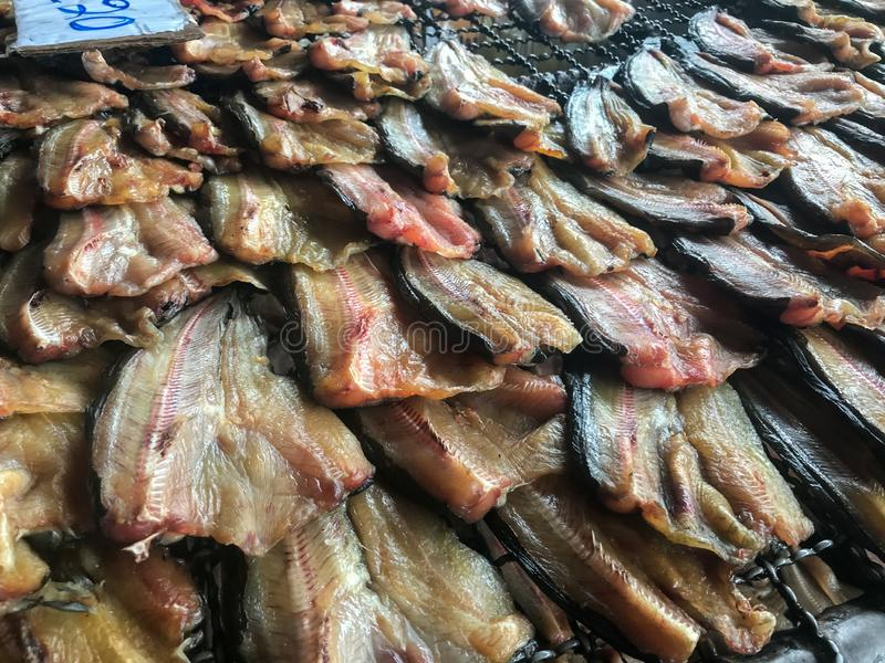 Dried catfish at local Thai market. Row of dried catfish at local Thai market royalty free stock photography