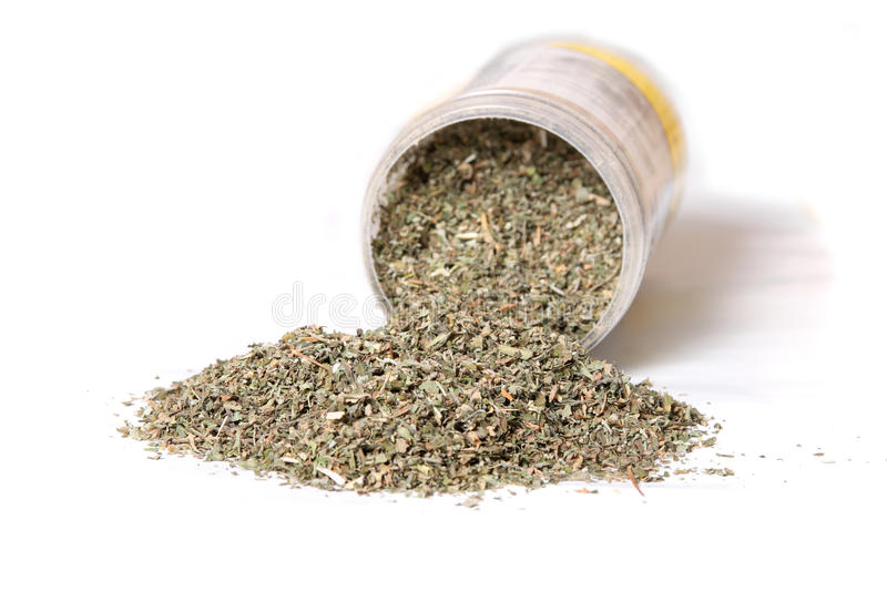 Dried catnip for cats. Dried green catnip for cats spilling from container on a white background royalty free stock image