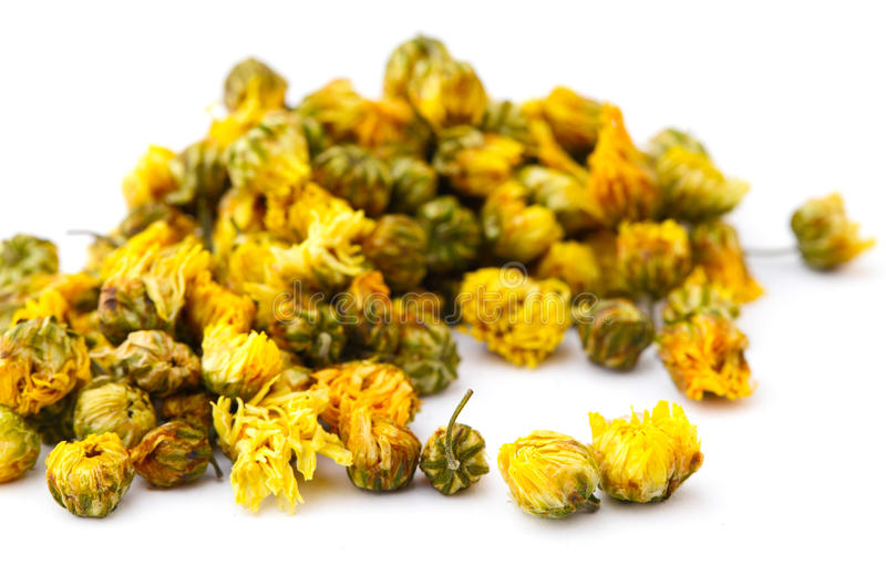 Dried chamomile flower royalty free stock image