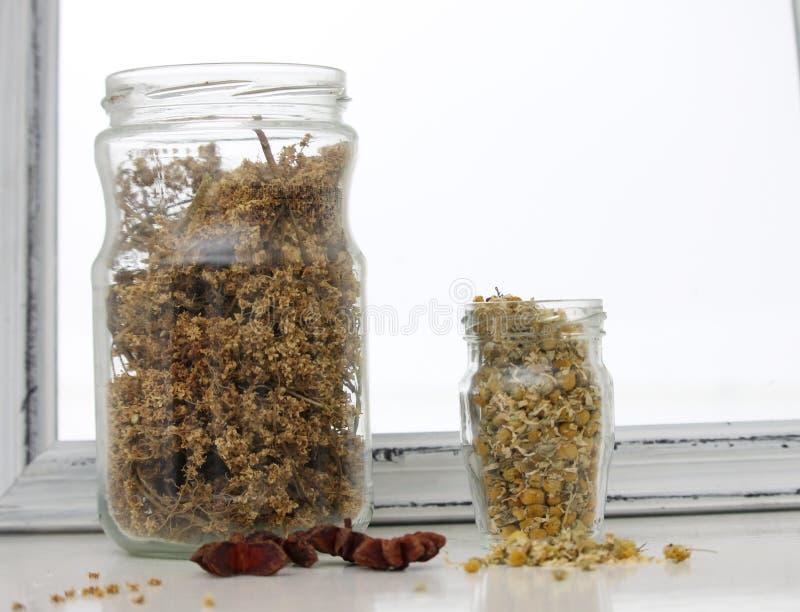 Dried chamomile flower,and Sambucus nigra stock photo