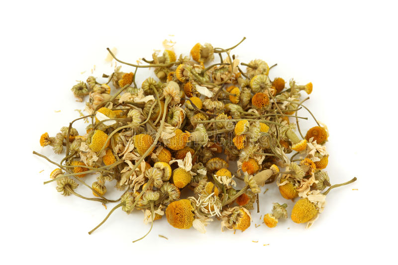 Dried chamomile tea stock images