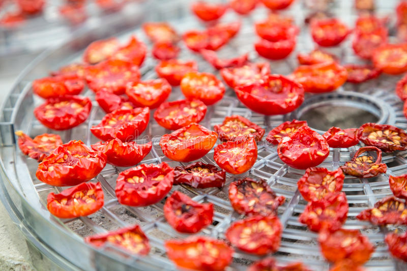 Dried cherry tomatoes royalty free stock photo