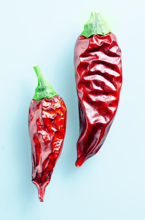 Dried chili peppers on a light blue background. Dried red chili peppers on a light blue background stock image