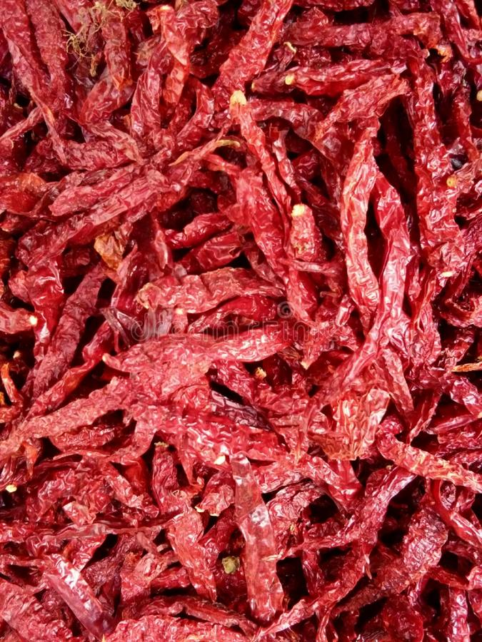 Dried chillies stock image