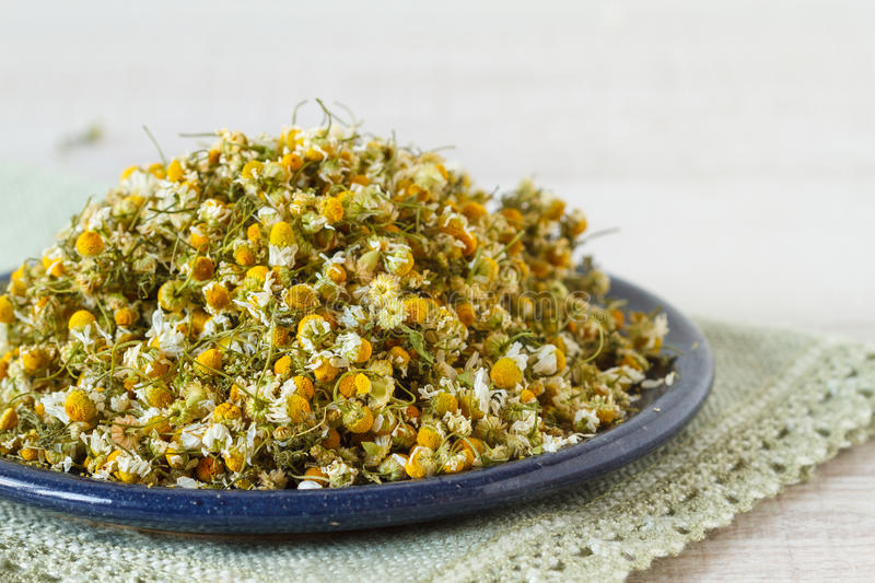 Dried chomomile flowers royalty free stock photo