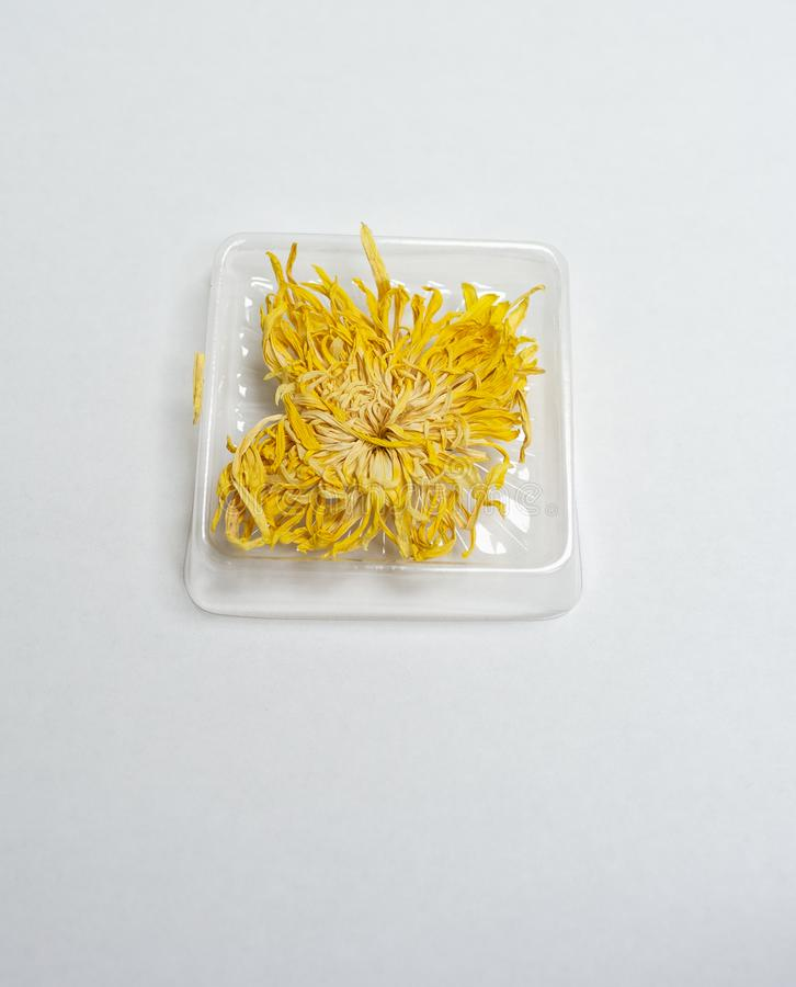 Dried Chrysanthemum flower for drink. Dried Chrysanthemum flower for herbal drink stock image