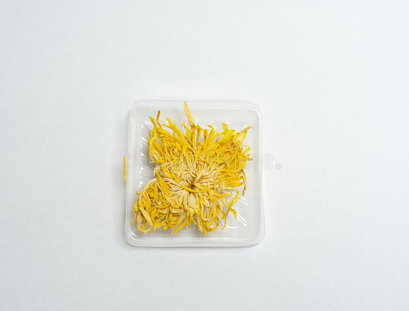 Dried Chrysanthemum flower for drink. Dried Chrysanthemum flower for herbal drink stock photos