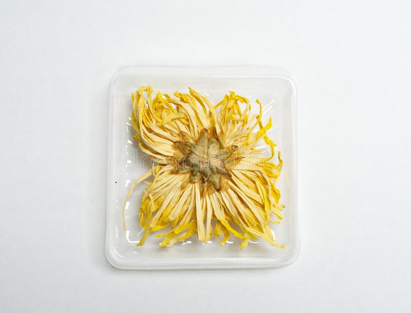 Dried Chrysanthemum flower for drink. Dried Chrysanthemum flower for herbal drink royalty free stock image
