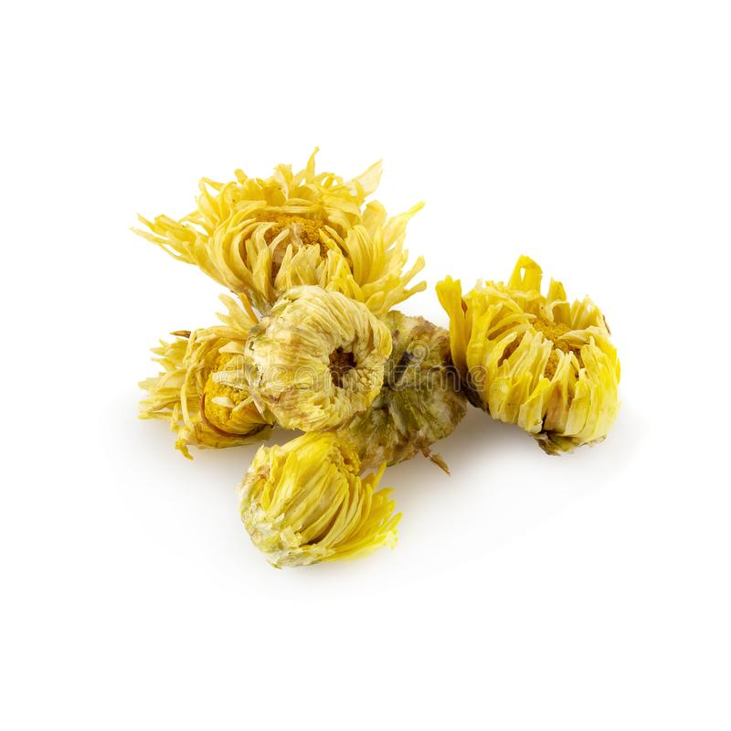 Dried Chrysanthemum Flowers isolated on a White Background. Aroma, asian, beverage, botanical, botany, bunch, china, chinese, close, color, cultivate, cure royalty free stock photos