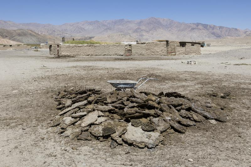 Dried cow dung in Bulunkul in Tajikistan. With the cow dung, the furnace is fired up royalty free stock photography