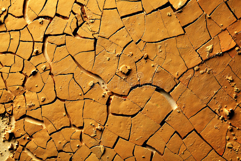 Dried Cracked Earth Stock Images