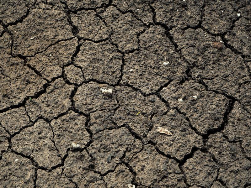 Dried cracked earth soil ground texture background.Crack soil on stock image