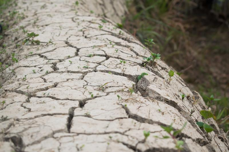 Dried cracked soil, effects of climate change royalty free stock images