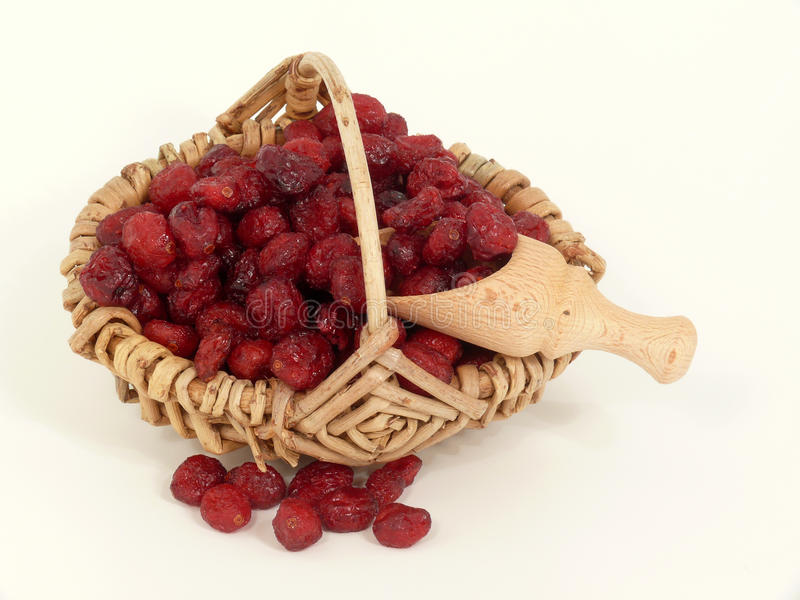 Download Dried Cranberries In The Basket Stock Photo - Image: 18788970